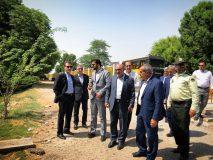 گزارش تصویری؛ بازدید مدیرعامل راه آهن جمهوری اسلامی ایران از محور جنوب