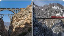 دوقلوهای تاریخی ایران و سوئیس + عکس