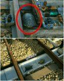 راه حل ژاپنیها برای کمک به عبور لاکپشتها از ریل قطار