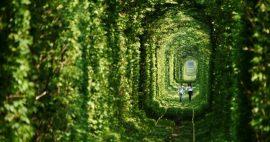 تونل عشق اوکراین ، یکی از رمانتیک ترین مکان های گردشگری
